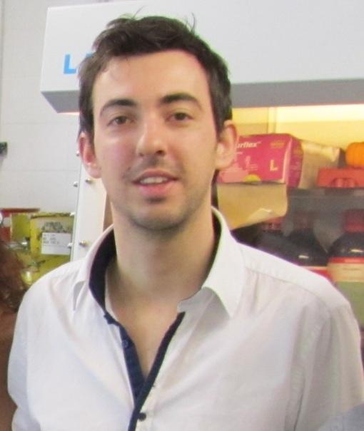 Luca Bertoluzzi
